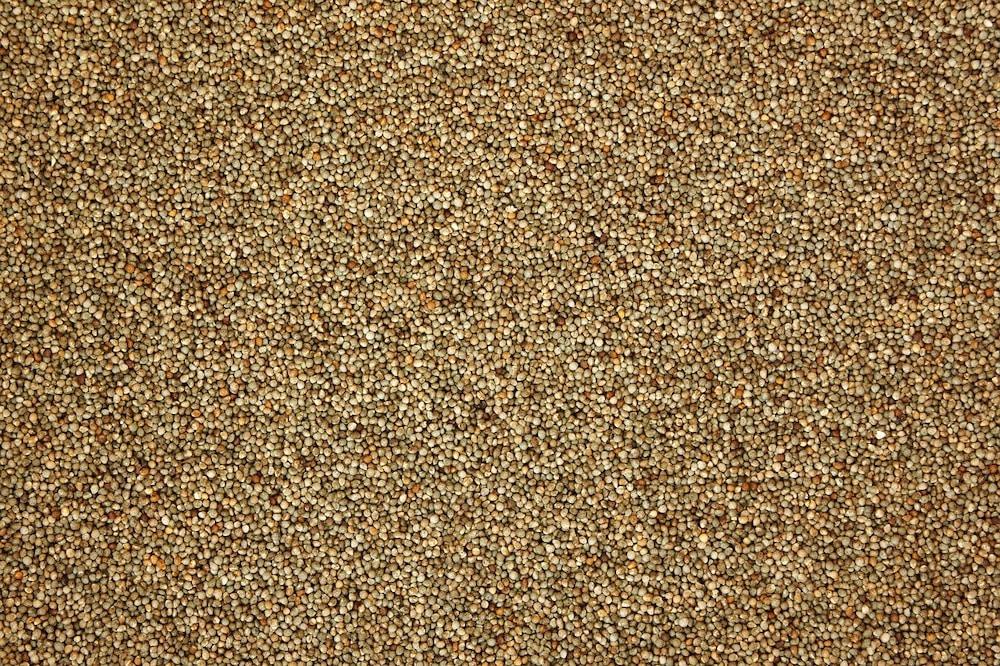 Low FODMAP Grains