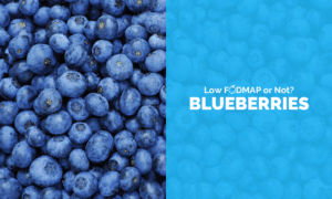Are Blueberries Low FODMAP